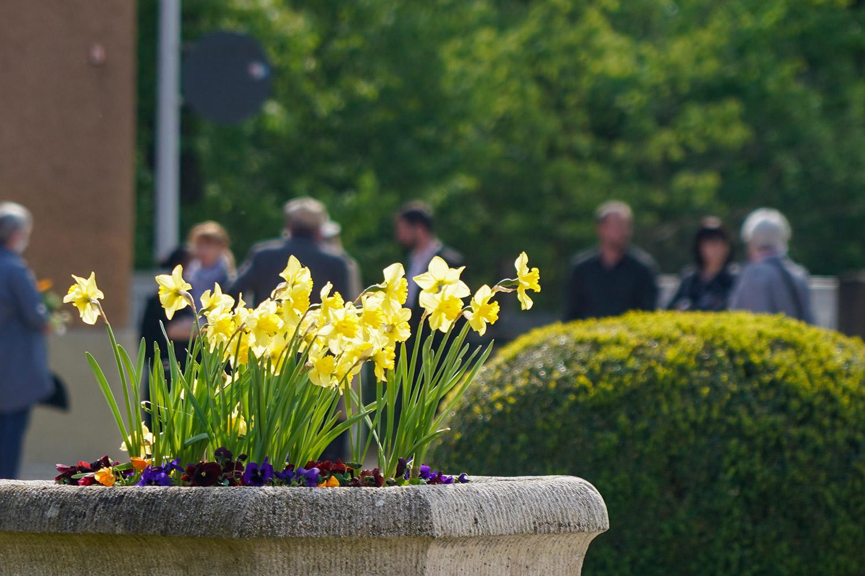 Trauergemeinde vor Friedhofshalle