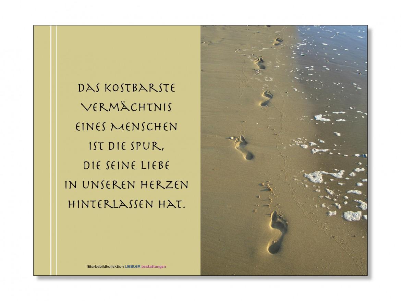 Spur_im_Sand